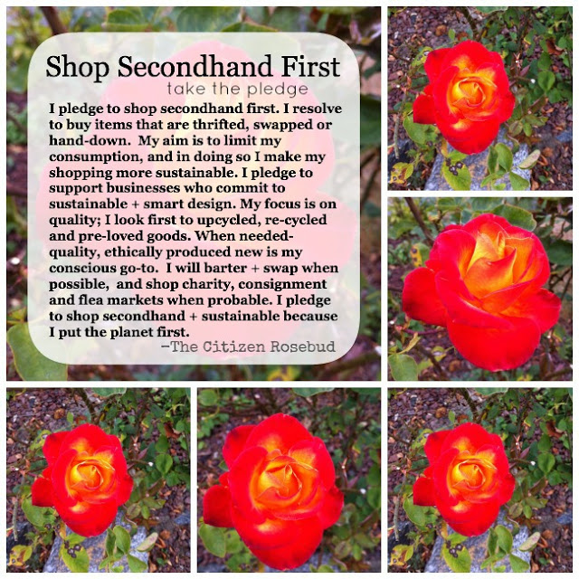 Secondhand Shopping Campaign