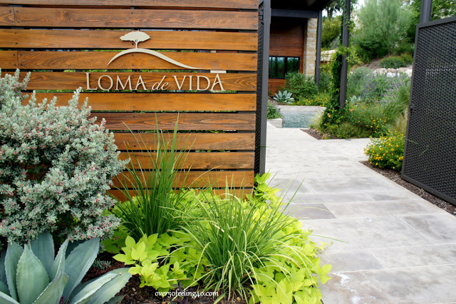 Loma de Vida Spa: Worth the Destination