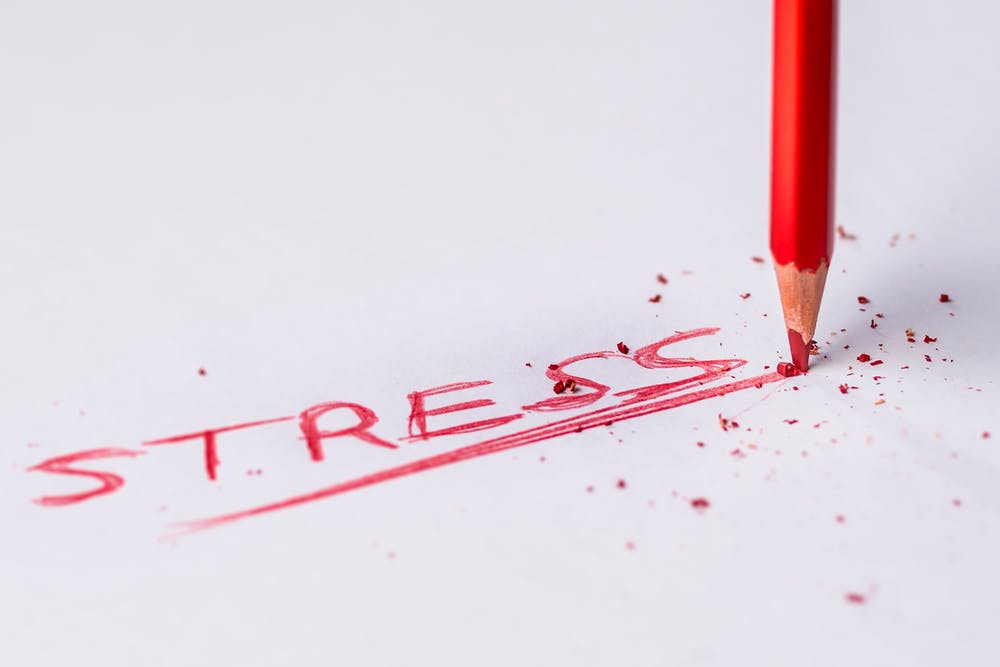 Pamela Lutrell discusses news about holiday stress