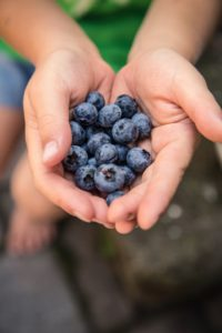 Berries and Inflammation on over 50 Feeling 40