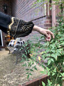 Chico's Embellished Peasant Sleeve on Pamela Lutrell