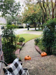 November in San Antonio from Pamela Lutrell