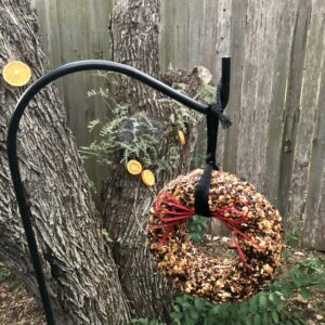 Pamela Lutrell's bird seed wreath