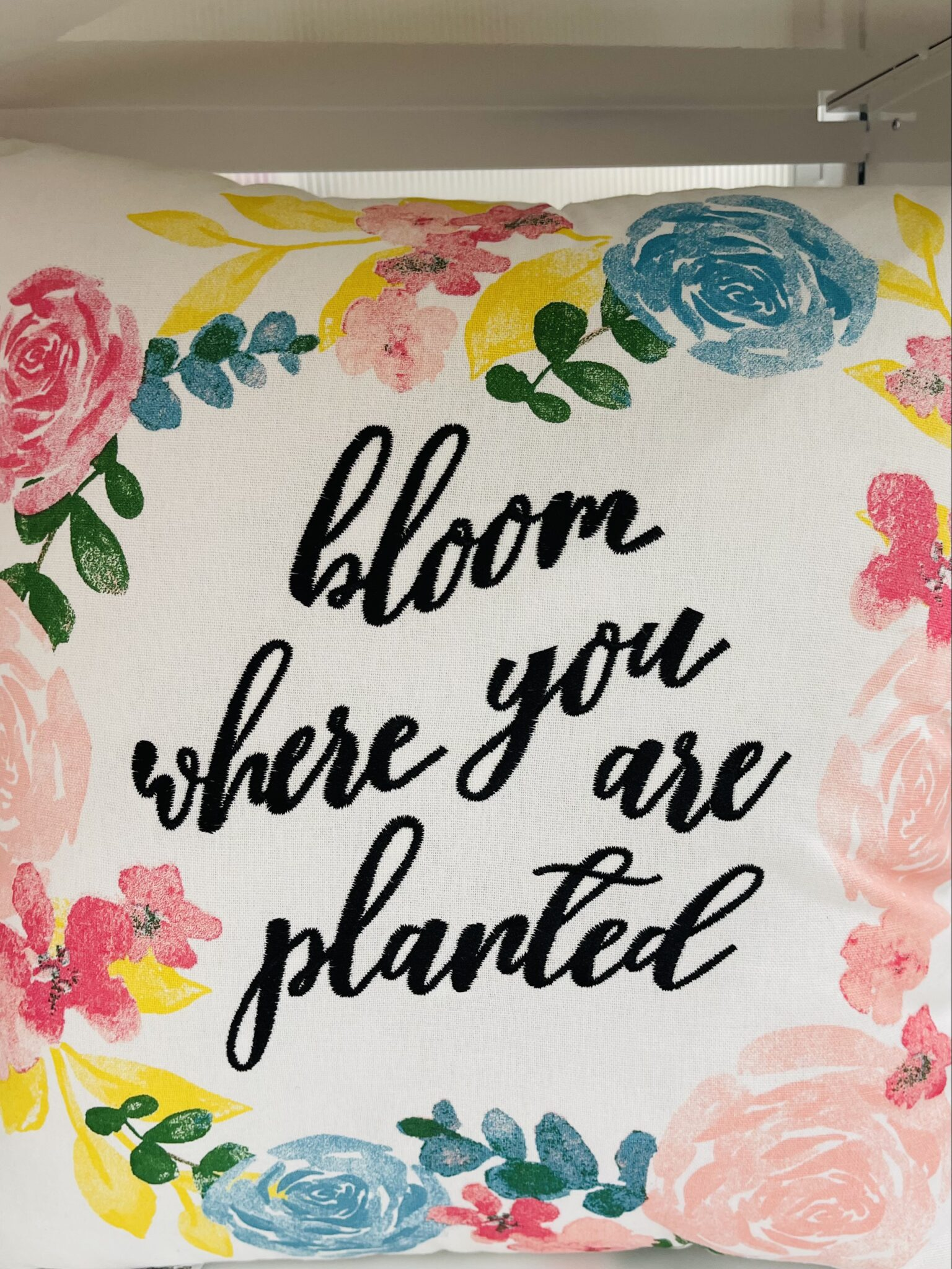 It's not cliche to bloom where you are planted
