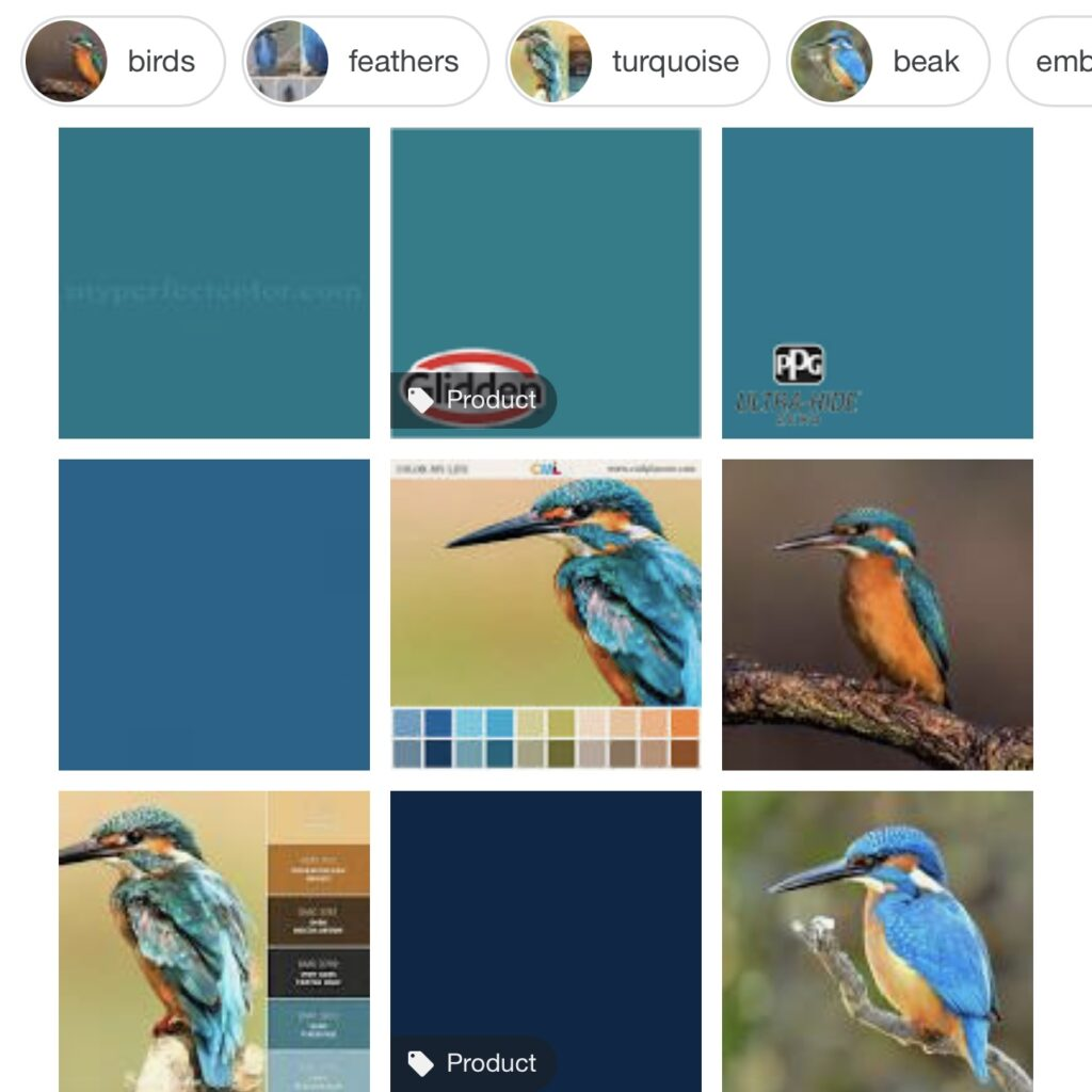 The search for kingfisher blue